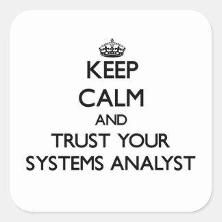 Guarde la calma y confíe en a su analista de calcomania cuadradas