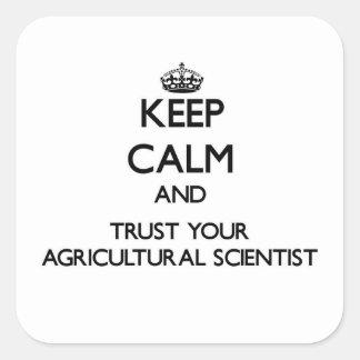 Guarde la calma y confíe en a su científico pegatina cuadradas personalizadas