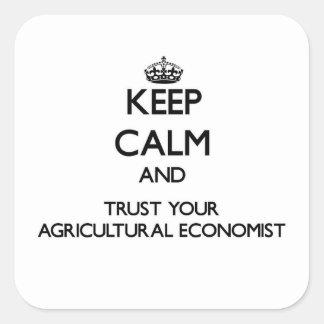 Guarde la calma y confíe en a su economista pegatina cuadrada