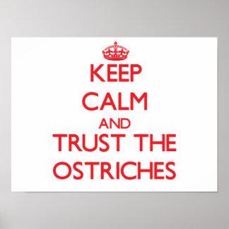 Guarde la calma y confíe en las avestruces impresiones