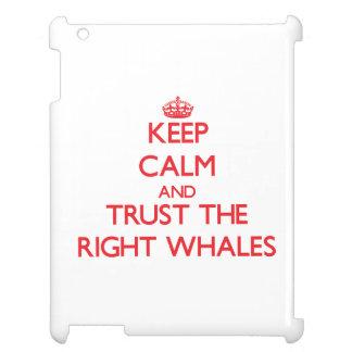Guarde la calma y confíe en las ballenas derechas