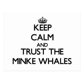 Guarde la calma y confíe en las ballenas pequeñas tarjetas postales