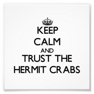 Guarde la calma y confíe en los cangrejos de ermit