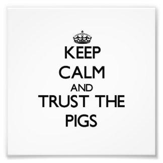Guarde la calma y confíe en los cerdos cojinete