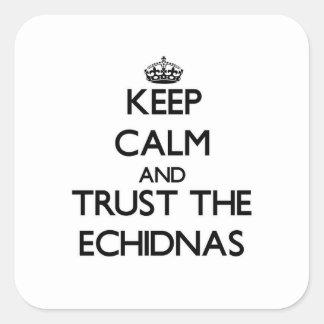 Guarde la calma y confíe en los Echidnas Pegatina Cuadrada
