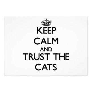 Guarde la calma y confíe en los gatos comunicado