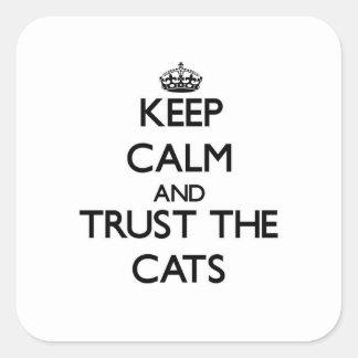 Guarde la calma y confíe en los gatos calcomanías cuadradas personalizadas