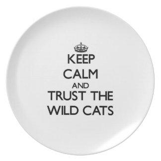 Guarde la calma y confíe en los gatos salvajes plato de comida