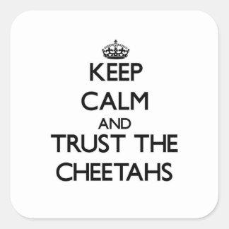 Guarde la calma y confíe en los guepardos pegatina cuadrada