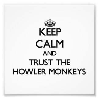 Guarde la calma y confíe en los monos de chillón impresiones fotográficas