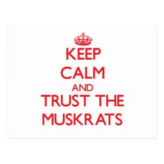 Guarde la calma y confíe en los Muskrats Tarjeta Postal