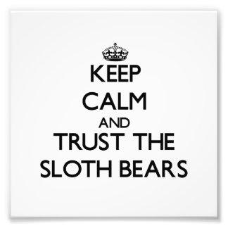 Guarde la calma y confíe en los osos de pereza