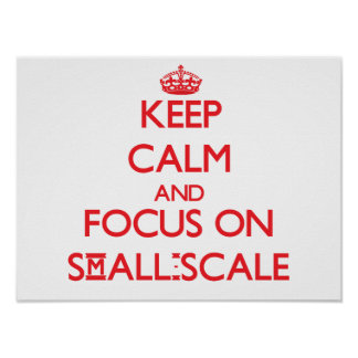 Guarde la calma y el foco en a escala reducida póster