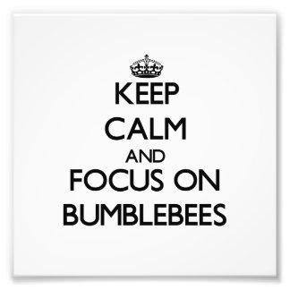 Guarde la calma y el foco en abejorros arte fotografico