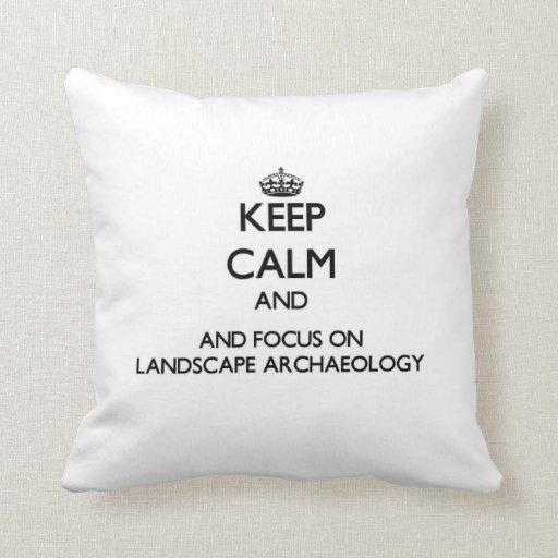 Guarde la calma y el foco en arqueología del almohada