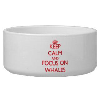 Guarde la calma y el foco en ballenas tazon para perro
