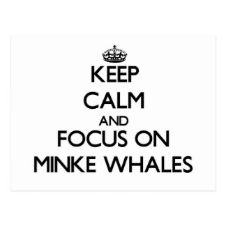 Guarde la calma y el foco en ballenas pequeñas postales