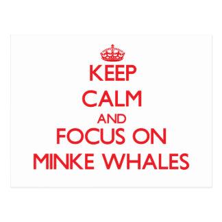 Guarde la calma y el foco en ballenas pequeñas tarjetas postales