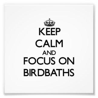 Guarde la calma y el foco en Birdbaths