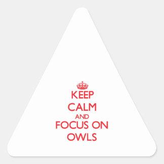 Guarde la calma y el foco en búhos pegatina triangular