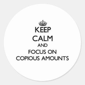 Guarde la calma y el foco en cantidades copiosas etiqueta redonda