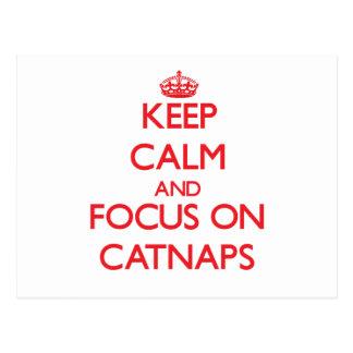 Guarde la calma y el foco en Catnaps Postal