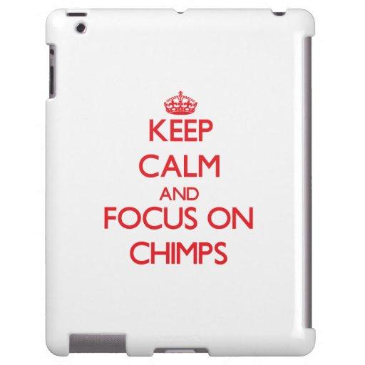 Guarde la calma y el foco en chimpancés
