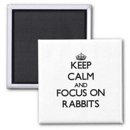 Guarde la calma y el foco en conejos iman