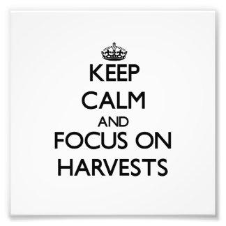 Guarde la calma y el foco en cosechas