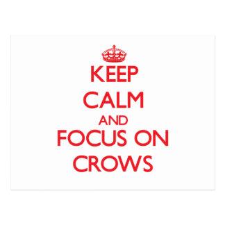 Guarde la calma y el foco en cuervos postales