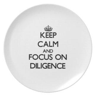 Guarde la calma y el foco en diligencia platos para fiestas