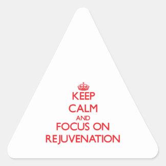 Guarde la calma y el foco en el rejuvenecimiento pegatinas de triangulo