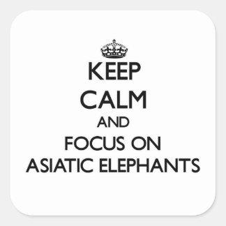 Guarde la calma y el foco en elefantes asiáticos pegatina cuadrada