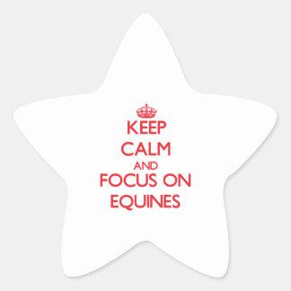 Guarde la calma y el foco en EQUINOS Calcomanía Forma De Estrella