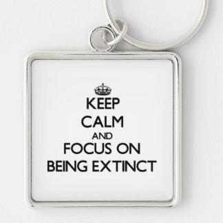 Guarde la calma y el foco en ESTAR EXTINTO Llaveros Personalizados
