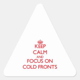 Guarde la calma y el foco en frentes fríos pegatina triangular