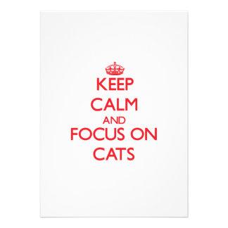 Guarde la calma y el foco en gatos invitaciones personalizada
