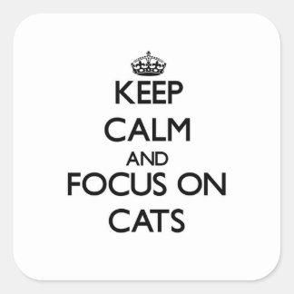 Guarde la calma y el foco en gatos calcomanía cuadrada