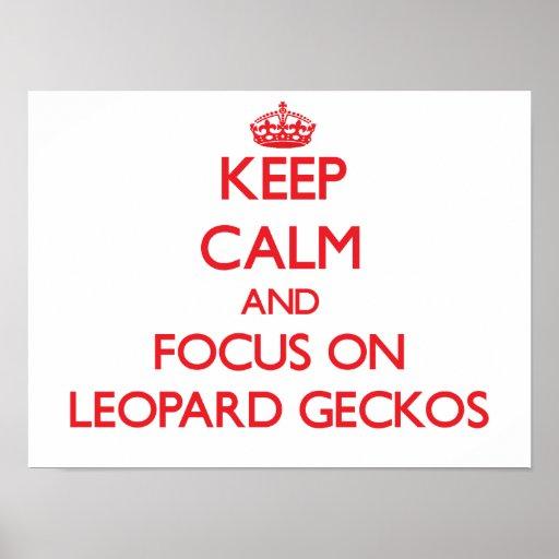 Guarde la calma y el foco en Geckos del leopardo Posters