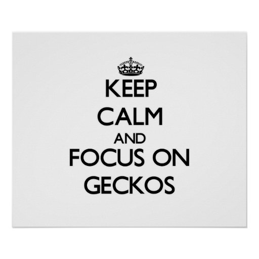 Guarde la calma y el foco en Geckos Poster