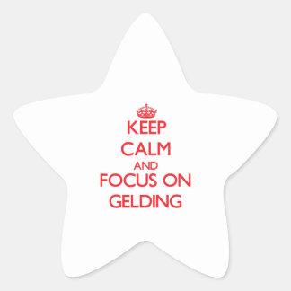 Guarde la calma y el foco en Gelding Pegatina En Forma De Estrella