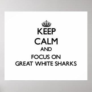 Guarde la calma y el foco en grandes tiburones bla