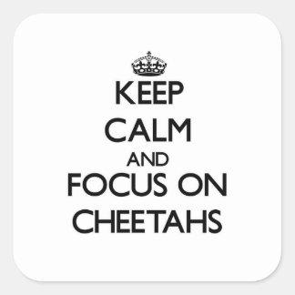 Guarde la calma y el foco en guepardos pegatina cuadrada