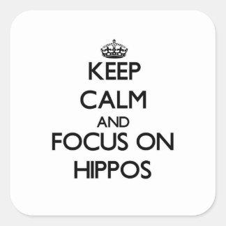 Guarde la calma y el foco en hipopótamos calcomania cuadradas