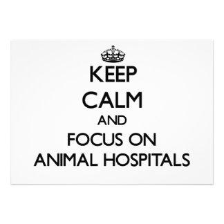 Guarde la calma y el foco en hospitales veterinari