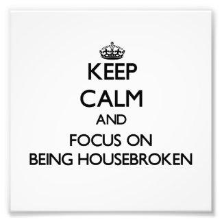 Guarde la calma y el foco en Housebroken