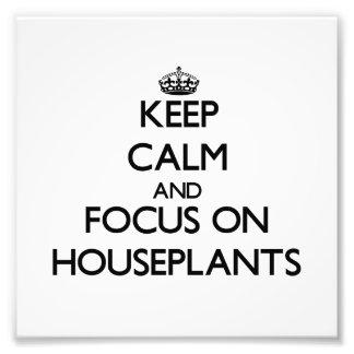 Guarde la calma y el foco en Houseplants Impresiones Fotograficas