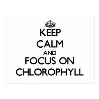 Guarde la calma y el foco en la clorofila postal