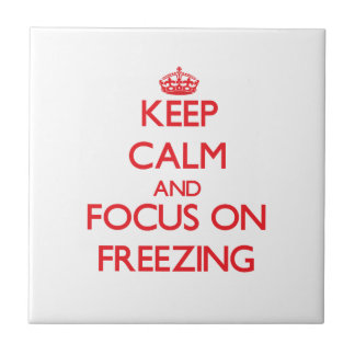 Guarde la calma y el foco en la congelación tejas  cerámicas