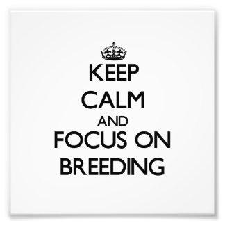 Guarde la calma y el foco en la cría